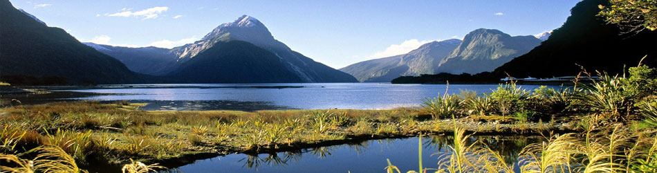 New Zealand Holiday Accommodation and Long Term Rentals