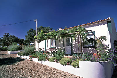 Santa Margarida da Serra - Accommodation - Homes, Chalets, Cottages & Villas - Quinta No Campo - ID 6971