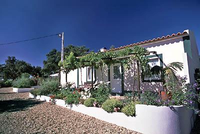 Santa Margarida da Serra - Alojamento - Casas, Chalés, Cottages & Moradias - Quinta No Campo - ID 6971