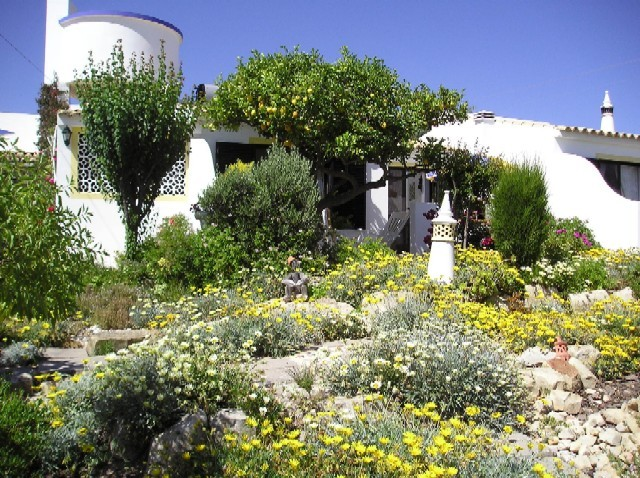 Loule - Alojamento - Alojamento Self Catering - Lemon Cottage - Quintassential Apartment Cottages - ID 7083