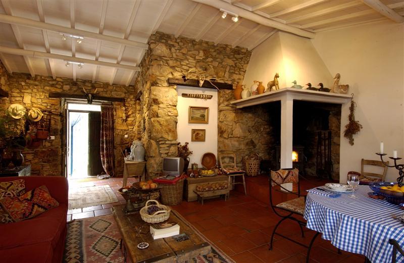 Figueiro dos Vinhos - Alojamento - Casas, Chalés, Cottages & Moradias - Casa da Lomba & Annex - ID 6963