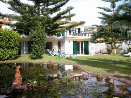 Garajau - Accommodation - Homes, Chalets, Cottages & Villas - Villa Echium - ID 6931