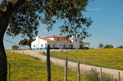 Alojamento - Pousadas & Bungalows - SOLD!!  VENDU!!  VERKAUFT!!  Penthouse for sale in Albufeira Center_ Distressed Sale - ID 5870