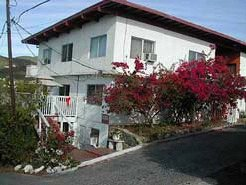 Holiday Rentals & Accommodation - Apartments - Virgin Islands - Caribbean - Cruz Bay