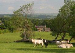 Location & Hébergement de Vacances- Vacances en Maison - United Kingdom - North East England - Hexham