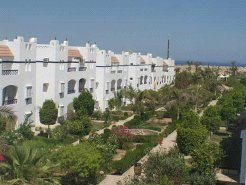 Holiday Rentals & Accommodation - Apartments - Egypt - Naama bay - Sharm El sheikh