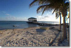 Holiday Rentals & Accommodation - Beachfront Apartments - Cayman - Bert Marson Drive - South Side
