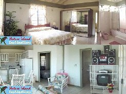 Holiday Villas to rent in close to Roseau, south west, Dominica