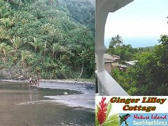 Holiday Rentals & Accommodation - Self Catering - Dominica - Dominica's East Coast - Riviere Cyrique