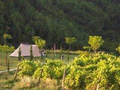 Campsites to rent in Montelparo, Le Marche, Italy