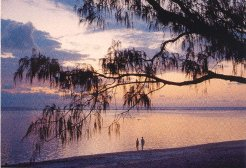 Bed and Breakfasts to rent in Port Douglas, Tropical North queensland, Australia