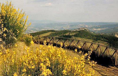 Location & Hébergement de Vacances - Maisons de Campagne - Italy - UMBRIA (Italy) - Allerona