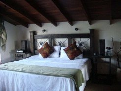 Bed and Breakfasts to rent in San Jose, Central Valley, Costa Rica