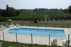 Holiday Rentals & Accommodation - Vineyard Accommodation - France - Gascony, South West France - Gers
