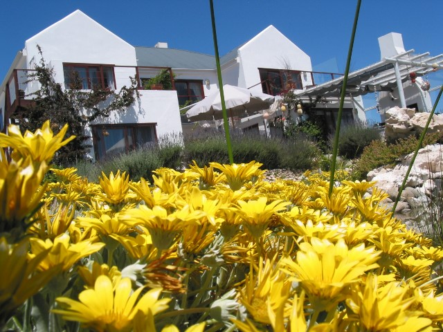 Holiday Rentals & Accommodation - Guest Houses - South Africa - West Coast - Paternoster