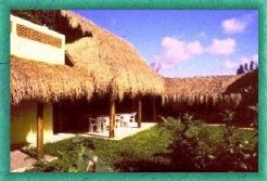 Holiday Rentals & Accommodation - Bed and Breakfasts - Mexico - Cozumel  - Cozumel
