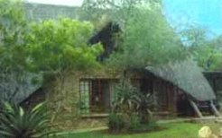 Holiday Rentals & Accommodation - Holiday Houses - South Africa - Marloth Park - Marloth Park