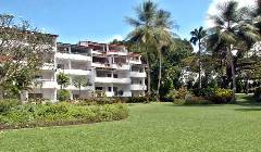 Holiday Rentals & Accommodation - Beachfront Apartments - Barbados - Barbados - Holetown