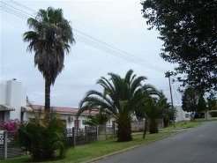 Holiday Rentals & Accommodation - Guest Houses - South Africa - Mpumalanga - Piet Retief
