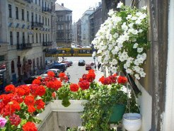 Apartments to rent in Budapest, Budapest, Hungary