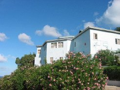 Holiday Rentals & Accommodation - Hotels - Antigua - North West Coast of Antigua - Antigua