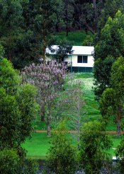 Farm Cottages to rent in Bridgetown, Australias South West, Australia