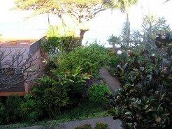 Holiday Rentals & Accommodation - Beachfront Apartments - United States - Maui/Hawaii/South Pacific - Lahaina