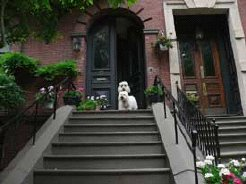Holiday Rentals & Accommodation - Bed and Breakfasts - USA - New England - Boston