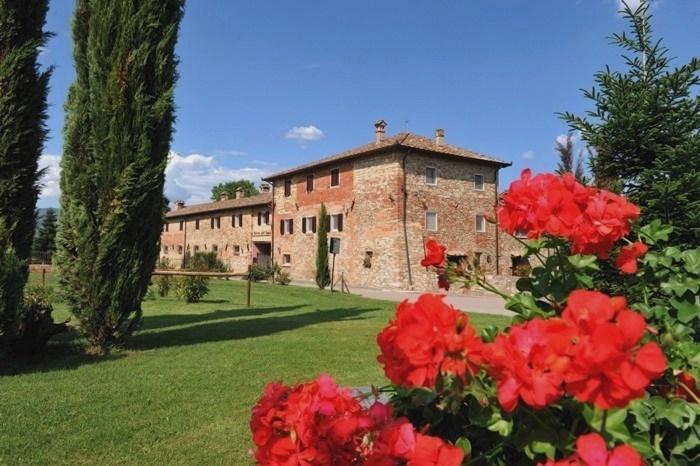 Location & Hébergement de Vacances - Ferme de Vacances - Italy - Tuscany - Arezzo