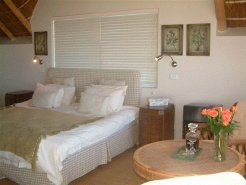 Holiday Rentals & Accommodation - Bed and Breakfasts - South Africa - Eastern Cape - Cape St Francis