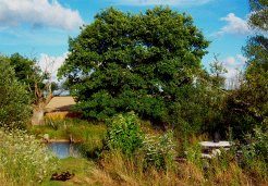 Campsites to rent in St Germain de Longue Chaume, Central Western France, France