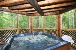 Holiday Rentals & Accommodation - Country Lodges - Canada - Mont Tremblant - Mont Tremblant