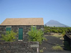 Holiday Rentals & Accommodation - Holiday Accommodation - Portugal - Azores - Pico Island