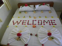Guest Houses to rent in Keyodhoo, Keyodhoo Island, Maldives