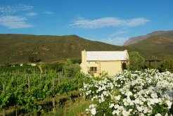 Holiday Rentals & Accommodation - Country Cottages - South Africa - Catani Farm - Barrydale