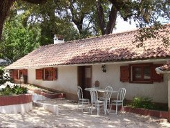 Holiday Rentals & Accommodation - Self Catering - Portugal - Central - Alvaiaizere