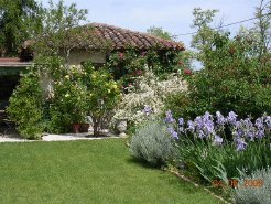 Holiday Rentals & Accommodation - Bed and Breakfasts - France - Midi Pyrenees - Condom