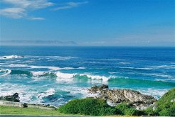 Gastehuise te huur in Hermanus, Overberg, South Africa