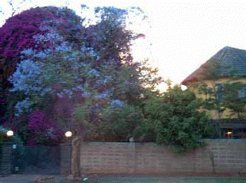 Gastehuise te huur in Pretoria, Gauteng, South Africa