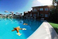 Location & Hébergement de Vacances - Appartements - Spain - Santa Cruz de Tenerife  - Puerto de la Cruz