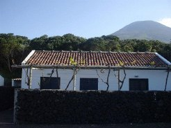 Holiday Rentals & Accommodation - Holiday Houses - Portugal - Pico Island - Azores - Madalena