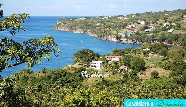 Holiday Rentals & Accommodation - Self Catering - Dominica - DOMINICA - MACOUCHERIE
