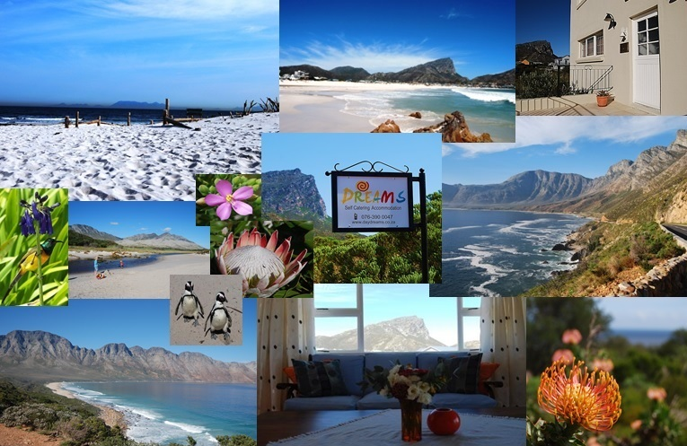 Holiday Rentals & Accommodation - Beach Houses - South Africa - Western Cape - Pringle Bay