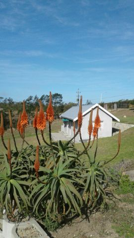 Holiday Rentals & Accommodation - Cottages - South Africa - Garden Route - Groot Brak river