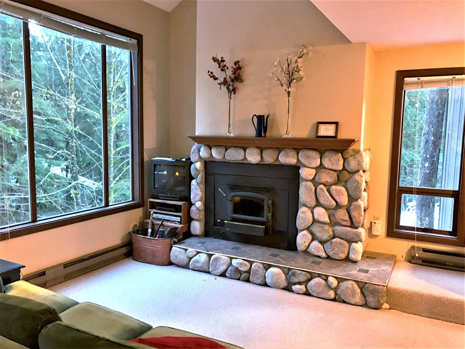 Holiday Rentals & Accommodation - Holiday Apartments - United States - Mt Baker - Glacier